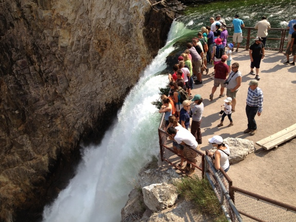 Montana Summer Missionaries at the Brink of the Lower Falls of Yellowstone River in Yellowstone Nat'l Park